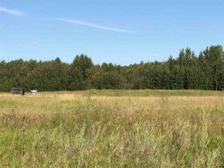 Photo 6: 57525 Rg Rd 214: Rural Sturgeon County Rural Land/Vacant Lot for sale : MLS®# E4138174