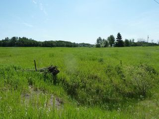 Photo 4: 57525 Rg Rd 214: Rural Sturgeon County Rural Land/Vacant Lot for sale : MLS®# E4138174