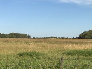 Photo 10: 57525 Rg Rd 214: Rural Sturgeon County Rural Land/Vacant Lot for sale : MLS®# E4138174