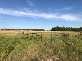 Photo 20: 57525 Rg Rd 214: Rural Sturgeon County Rural Land/Vacant Lot for sale : MLS®# E4138174