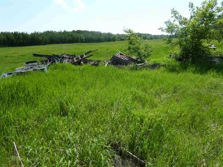 Photo 7: 57525 Rg Rd 214: Rural Sturgeon County Rural Land/Vacant Lot for sale : MLS®# E4138174