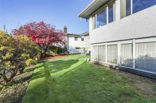 "Photo 12: 642 W 52ND Avenue in Vancouver: South Cambie House for sale in ""LANGARA"" (Vancouver West)  : MLS®# R2336682"