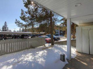 Photo 16: 132 4404 122 Street in Edmonton: Zone 16 Condo for sale : MLS®# E4146847