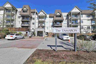 """Main Photo: 101 12083 92A Avenue in Surrey: Queen Mary Park Surrey Condo for sale in """"The Tamaron"""" : MLS®# R2348498"""