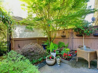 Photo 18: 7 1019 North Park St in VICTORIA: Vi Central Park Row/Townhouse for sale (Victoria)  : MLS®# 815307