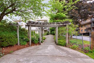 """Photo 1: 305 12206 224TH Street in Maple Ridge: East Central Condo for sale in """"Cottonwood Place"""" : MLS®# R2374390"""