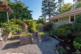 Photo 31: 5513 Parker Avenue in VICTORIA: SE Cordova Bay Single Family Detached for sale (Saanich East)  : MLS®# 411595