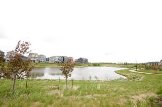 Photo 29: 584 ORCHARDS Boulevard in Edmonton: Zone 53 House for sale : MLS®# E4160741