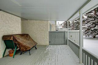 Photo 29: 326 REHWINKEL Close in Edmonton: Zone 14 House Half Duplex for sale : MLS®# E4184022