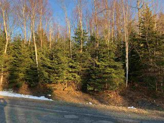 Photo 1: Lot 8 Brickyard Road in Mira Gut: 211-Albert Bridge / Mira Vacant Land for sale (Cape Breton)  : MLS®# 202006918