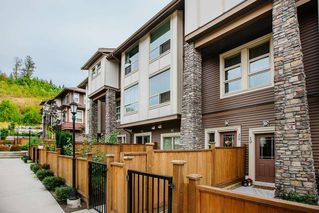 """Photo 1: 20 10480 248 Street in Maple Ridge: Thornhill MR Townhouse for sale in """"The Terraces"""" : MLS®# R2489905"""