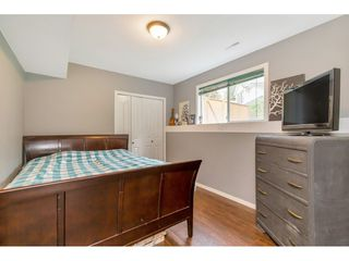 Photo 26: 23040 124B Avenue in Maple Ridge: East Central House for sale : MLS®# R2507856