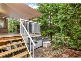 Photo 35: 23040 124B Avenue in Maple Ridge: East Central House for sale : MLS®# R2507856
