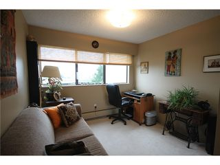 "Photo 6: 304 1048 KING ALBERT Avenue in Coquitlam: Central Coquitlam Condo for sale in ""BLUE MOUNTAIN MANOR"" : MLS®# V914288"