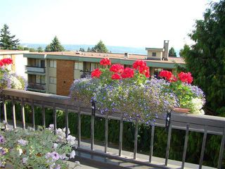 "Photo 9: 304 1048 KING ALBERT Avenue in Coquitlam: Central Coquitlam Condo for sale in ""BLUE MOUNTAIN MANOR"" : MLS®# V914288"