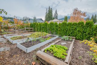 Photo 10: 1101 SE 7 Avenue in Salmon Arm: Southeast House for sale : MLS®# 10171518