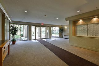"""Photo 19: 404 15220 GUILDFORD Drive in Surrey: Guildford Condo for sale in """"The Boulevard"""" (North Surrey)  : MLS®# R2163658"""