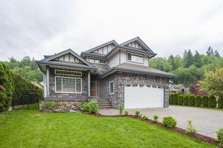 Photo 43: 7926 Brookwood in Chilliwack: Eastern Hillsides House for sale : MLS®# R2061263