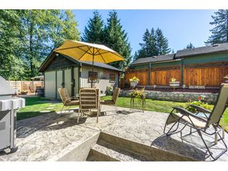 """Photo 16: 19982 50A Avenue in Langley: Langley City House for sale in """"Eagle Heights"""" : MLS®# R2202226"""