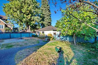 Photo 15: 7288 WAVERLEY Avenue in Burnaby: Metrotown House for sale (Burnaby South)  : MLS®# R2209918