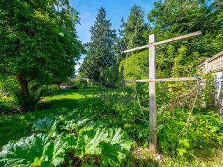 Photo 16: 7820 LOHN Road in Halfmoon Bay: Halfmn Bay Secret Cv Redroofs House for sale (Sunshine Coast)  : MLS®# R2272108
