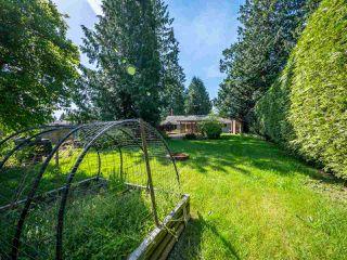 Photo 17: 7820 LOHN Road in Halfmoon Bay: Halfmn Bay Secret Cv Redroofs House for sale (Sunshine Coast)  : MLS®# R2272108