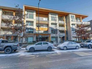 """Photo 1: 413 3163 RIVERWALK Avenue in Vancouver: Champlain Heights Condo for sale in """"NEW WATER"""" (Vancouver East)  : MLS®# R2293473"""