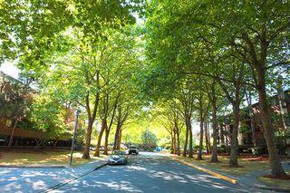 """Main Photo: 312 7297 MOFFATT Road in Richmond: Brighouse South Condo for sale in """"DORCHESTER CIRCLE"""" : MLS®# R2301040"""