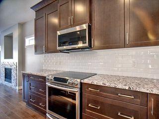 Photo 7: 13913 102 Avenue in Edmonton: Zone 11 House for sale : MLS®# E4146106