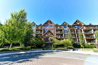 """Main Photo: 166 8328 207A Street in Langley: Willoughby Heights Condo for sale in """"Yorkson Creek"""" : MLS®# R2363559"""