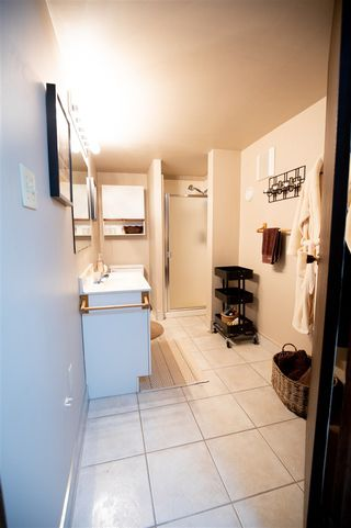 Photo 23: 9749 143 Street in Edmonton: Zone 10 House for sale : MLS®# E4161232