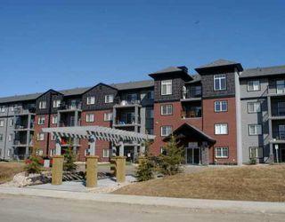 Main Photo: 128 646 MCALLISTER Loop in Edmonton: Zone 55 Condo for sale : MLS®# E4172605