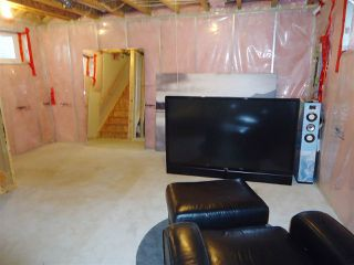 Photo 19: 4206 ORCHARDS Drive in Edmonton: Zone 53 House for sale : MLS®# E4208614
