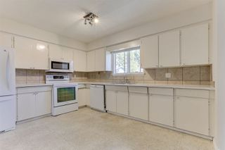 Photo 10: 7310 CATHERWOOD Street in Mission: Mission BC House for sale : MLS®# R2487299