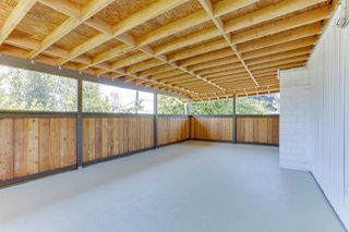 Photo 26: 7310 CATHERWOOD Street in Mission: Mission BC House for sale : MLS®# R2487299
