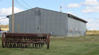 """Photo 9: 4816 BALDONNEL Road in Fort St. John: Fort St. John - Rural E 100th House for sale in """"BALDONNEL"""" (Fort St. John (Zone 60))  : MLS®# R2501024"""