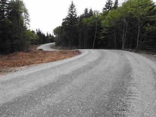 Photo 3: Lot 1 Alps Road in Porters Lake: 31-Lawrencetown, Lake Echo, Porters Lake Vacant Land for sale (Halifax-Dartmouth)  : MLS®# 202025746