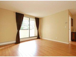 "Photo 14: 107 8870 CITATION Drive in Richmond: Brighouse Condo for sale in ""CARTWELL MEWS"" : MLS®# V1036917"