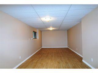 "Photo 20: 23635 TAMARACK Lane in Maple Ridge: Albion House for sale in ""KANAKA RIDGE"" : MLS®# V1054602"