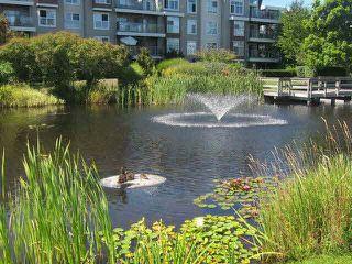 """Photo 17: 223 12639 NO 2 Road in Richmond: Steveston South Condo for sale in """"NAUTICA SOUTH"""" : MLS®# V1130294"""