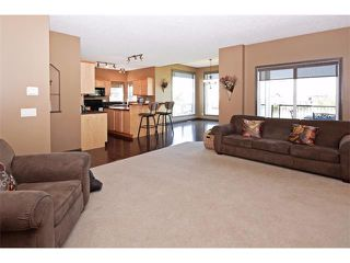 Photo 11: 18 CRYSTAL SHORES Place: Okotoks House for sale : MLS®# C4018955