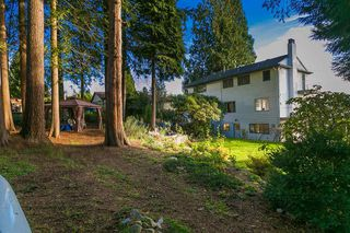 Photo 6: 530 E 29TH Street in North Vancouver: Upper Lonsdale House for sale : MLS®# R2015333