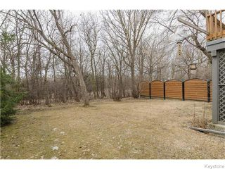 Photo 17: 88 Brahms Bay in Winnipeg: North Kildonan Residential for sale (North East Winnipeg)  : MLS®# 1607582