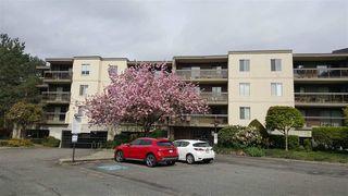 "Photo 2: 102 6651 LYNAS Lane in Richmond: Riverdale RI Condo for sale in ""BRAESIDE"" : MLS®# R2056784"