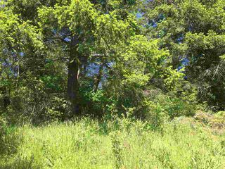 Photo 4: LOT 1 SEA OTTER ROAD in Pender Harbour: Pender Harbour Egmont Land for sale (Sunshine Coast)  : MLS®# R2088645