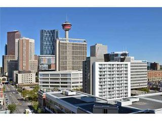 Photo 17: 1007 13 Avenue SW in Calgary: Single Level Apartment for sale : MLS®# C3539830