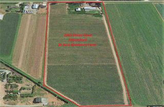 Photo 3: 2961 DIXON Road in Abbotsford: Sumas Prairie Agri-Business for sale : MLS®# C8011233