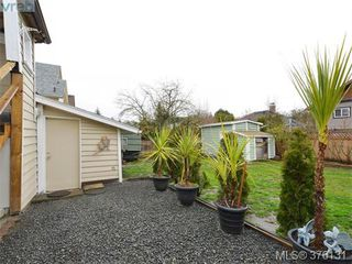Photo 18: 2555 Prior St in VICTORIA: Vi Hillside Single Family Detached for sale (Victoria)  : MLS®# 755091