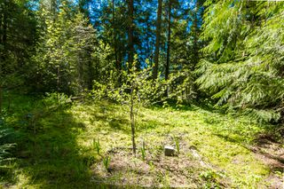 Photo 29: 3977 Myers Frontage Road: Tappen House for sale (Shuswap)  : MLS®# 10134417