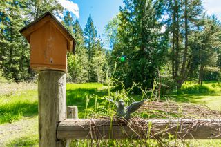 Photo 17: 3977 Myers Frontage Road: Tappen House for sale (Shuswap)  : MLS®# 10134417